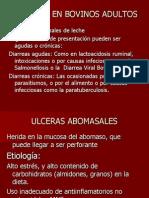 Enfermedades digestivas[1]