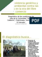 Condiciones de Vida de La Comunidad Michel n Chalchuapa ESA, Marzo 2007