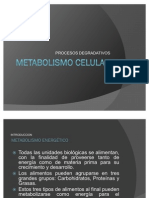 Metabolismo de Los Carbohidratos