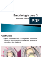 Embriologie 3