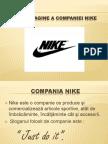 Criza de Imagine a Companiei Nike