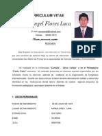 Curriculum 2012 Jesus Angel Flores Luca