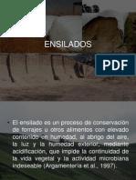 ENSILADOS