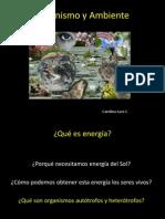 PPT Fotosíntesis 1ro medio