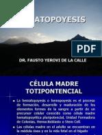 HEMATOPOYESIS (2)