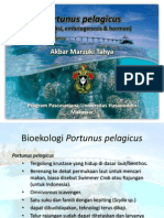 Portunus Pelagicus Reproduksi Embrio & Hormon)