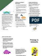 Spanish Salmonella 408