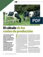 Calcular Costos Produccion de Carne