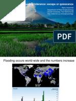 Flooding tolerance
