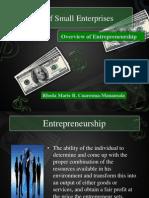 2. SME Overview of Entrepreneurship