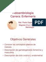 egametognesis-100106080432-phpapp01