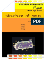Virus Worksheet