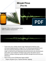 Minyak Pinus
