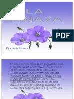 Lalinaza