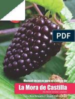Manual Tecnico de Mora 2da EDICION