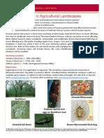 Invasive Species in Ag Landscapes Spring 2102 Workshop Flier