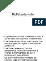 Biofísica da visão 2009