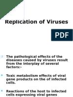 Replication of Viruses Black n White
