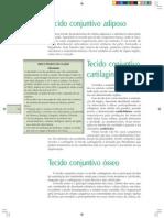 Capacidade_critica