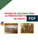 CRIA GALLINAS