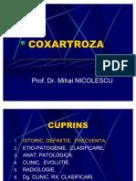 COXARTROZA NICOLESCU