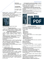 Tema 3. Bazele Organizarii Arhitecturale Ale Apartamentului111