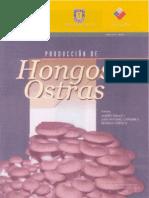 HONGOS OSTRA