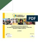 113jonbickel-programadeeficienciaenergeticaenladrillerasartesanales-101026140404-phpapp01