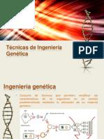 Expo Sic Ion Tecnicas de Ingenieria Genetica Final