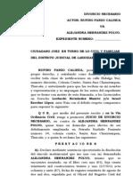 DIVORCIO_NECESARIO_ponzo[1]