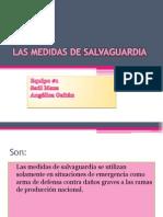 Las Medidas de Salvaguardia