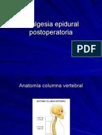 Analgesia Epidural Postoperatoria1
