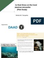 Presentation of Pilot Study