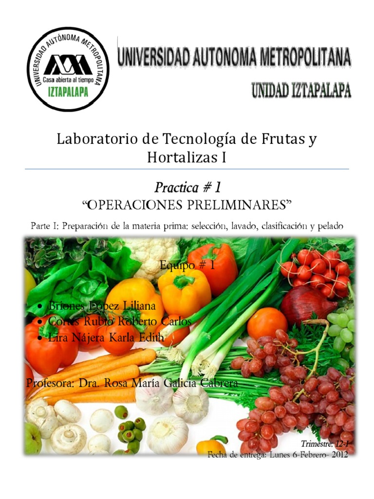 Practica #1 Frutas