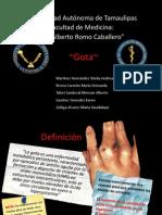 Gota Bioquimica