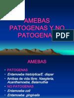 AMIBAS (2)