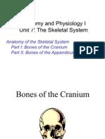 Sistem Rangka (Skeletel System)