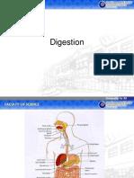 Sistem Pencernaan (Digestion System)