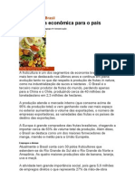 Fruticultura no Brasil-Importância econômica para o país