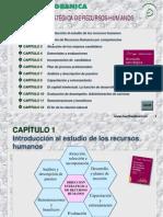 Alles Marta Alicia - Direccion Estrategica de Rrhh