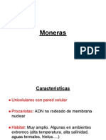 2_Moneras