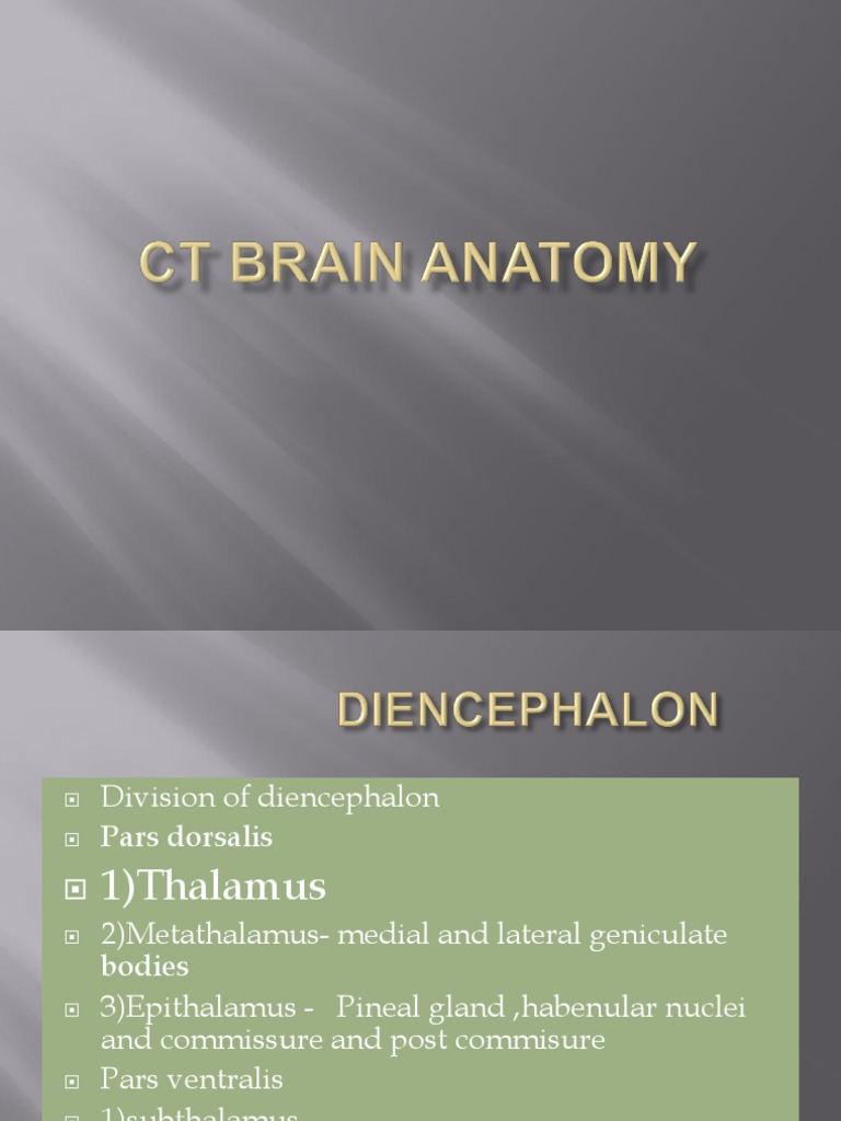 CT BRAIN Anatomy | Human Head And Neck | Earth & Life Sciences