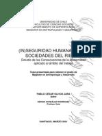 (IN)SEGURIDAD HUMANA EN LAS SOCIEDADES DEL RIESGO. Estudio de las Consecuencias de la Modernidad aplicado al ámbito del trabajo.