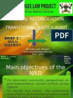 Presentation for NRTJ Audit Briefs