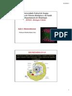 Biomembranas_marlucia