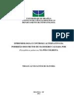 EPIDEMIOLOGIA E CONTROLE ALTERNATIVO DA PODRIDÃO DOS FRUTOS DE MAMOEIRO CAUSADA POR Phytophthora palmivora NA PÓS-COLHEITA