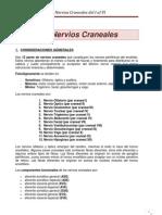 Nervios Craneales Del I Al VI