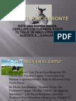OBRA EL RINOCERONTE