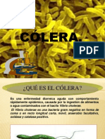 Presentacion DE COLERA
