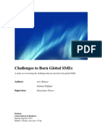 Challenges to Born Global SMEs